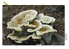 Roadside Treasure Carry-all Pouch by Chalet Roome-Rigdon