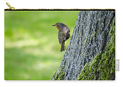 Robin At Rest Carry-all Pouch by Spikey Mouse Photography