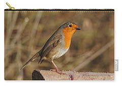 Robin On A Log -2 Carry-all Pouch
