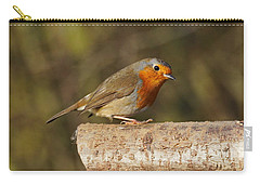Robin On A Log Carry-all Pouch