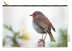 Robin On A Pole Carry-all Pouch