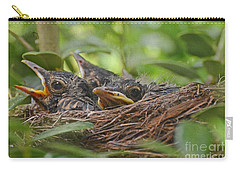 Robins In The Nest Carry-all Pouch by Debbie Portwood