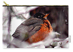 Carry-all Pouch featuring the photograph Robins' Patience by Lesa Fine