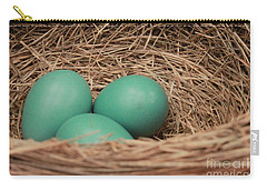 Robins Three Blue Eggs Carry-all Pouch