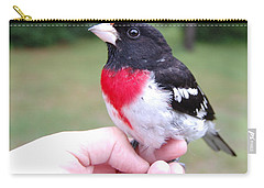 Carry-all Pouch featuring the photograph Rose Breasted by Mim White