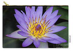 Royal Purple Water Lily #4 Carry-all Pouch