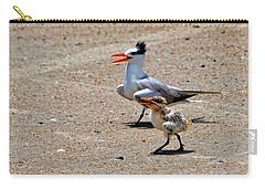 Carry-all Pouch featuring the photograph Royal Tern With Chick by Ludwig Keck