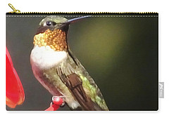 Ruby Throated Hummingbird 2 Carry-all Pouch