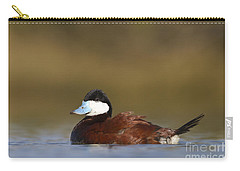 Carry-all Pouch featuring the photograph Ruddy Duck  by Bryan Keil
