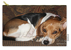 Carry-all Pouch featuring the photograph Ruff Day by John Telfer