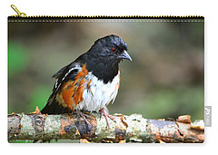 Rufous Sided Towhee Carry-all Pouch by Deena Stoddard
