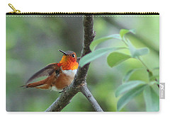 Rufus Hummingbird Carry-all Pouch