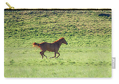 Runaway Colt Panorama Carry-all Pouch