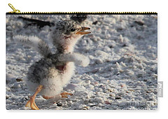 Running Free - Least Tern Carry-all Pouch by Meg Rousher