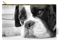 Sad Boxer Dog Carry-all Pouch