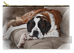 Saint Bernard Carry-all Pouch
