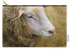 Carry-all Pouch featuring the photograph Sallie Sheep - A Portrait by Dora Sofia Caputo Photographic Art and Design