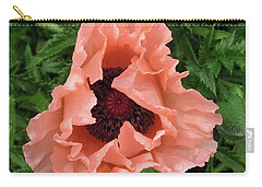 Salmon Colored Poppy Carry-all Pouch by Barbara Griffin