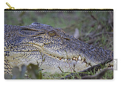 Saltwater Crocodile Carry-all Pouch by Venetia Featherstone-Witty