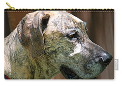Carry-all Pouch featuring the photograph Sammy by Aimee L Maher Photography and Art Visit ALMGallerydotcom