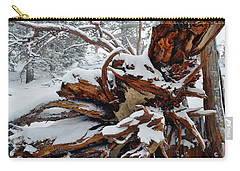Carry-all Pouch featuring the photograph San Jacinto Fallen Tree by Kyle Hanson