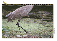 Carry-all Pouch featuring the photograph Sandhill Crane And Eggs by Paul Rebmann