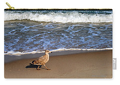 Sandpiper At Ortley Beach, Nj Carry-all Pouch