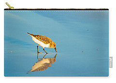 Sandpiper Mirror Carry-all Pouch