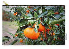 Satsumas Carry-all Pouch