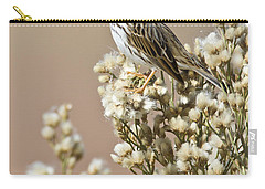 Carry-all Pouch featuring the photograph Savannah Sparrow by Bryan Keil