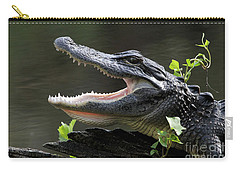 Say Aah - American Alligator Carry-all Pouch by Meg Rousher