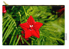 Carry-all Pouch featuring the photograph Scarlet Morning Glory - Horizontal by Ramabhadran Thirupattur