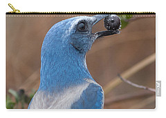 Carry-all Pouch featuring the photograph Scrub Jay With Acorn by Paul Rebmann