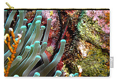 Carry-all Pouch featuring the photograph Sea Anemone And Coral Rainbow Wall by Amy McDaniel