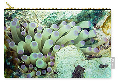 Carry-all Pouch featuring the photograph Sea Anemone With Squat Anemone Shrimp Family by Amy McDaniel