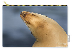 Carry-all Pouch featuring the photograph Sea Lion Stretch by Bryan Keil