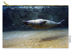 Carry-all Pouch featuring the photograph Sea Lion Swimming Upsidedown by Verana Stark