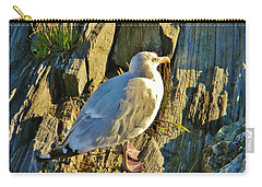 Seagull In Shadow Carry-all Pouch by Jean Goodwin Brooks