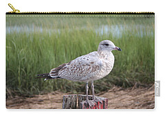 Carry-all Pouch featuring the photograph Seagull by Karen Silvestri