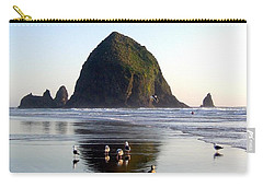 Seagulls And A Surfer Carry-all Pouch