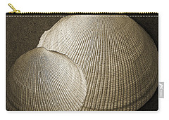 Seashells Spectacular No 8 Carry-all Pouch by Ben and Raisa Gertsberg
