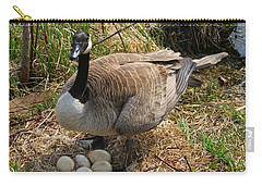 Carry-all Pouch featuring the photograph See My Eggs by Elizabeth Winter