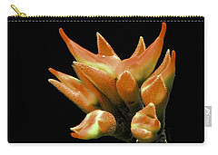 Serene - Unruffled Carry-all Pouch by Ramabhadran Thirupattur