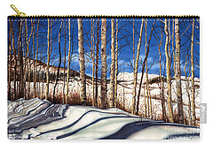Carry-all Pouch featuring the painting Shadow Dance by Barbara Jewell