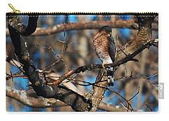 Carry-all Pouch featuring the photograph Sharp Shinned Hawk by Mim White