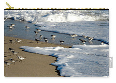 Shore Birds South Florida Carry-all Pouch