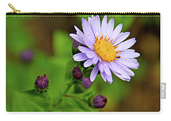 Showy Aster Carry-all Pouch by Ed  Riche
