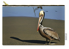 Shy Pelican Carry-all Pouch