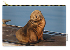 Shy Sea Lion Pup  Carry-all Pouch