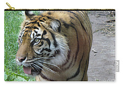 Carry-all Pouch featuring the photograph Siberian Tiger by Lingfai Leung